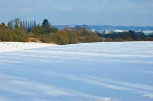 kentfield in the snow 2